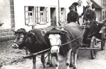 Schmiedemeister Gustav Molz mit den Toechtern Alwine und Auguste nebst Sohn Gustav auf dem Wagen